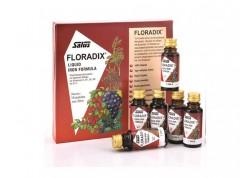 POWER HEALTH Floradix 10x20ml